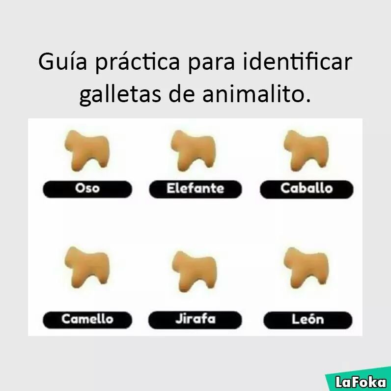 guia para identificar galletas animalitos